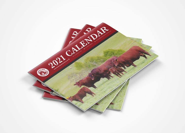 The Lincoln Red Cattle Society Calendar